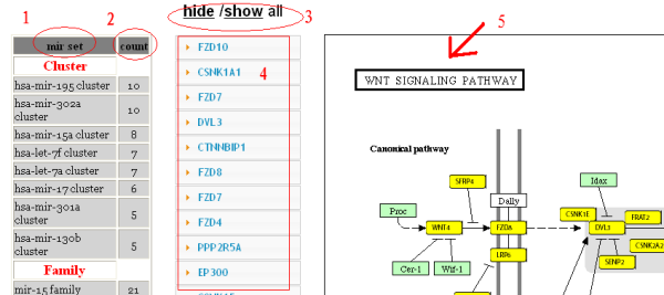 Gene annotation tools